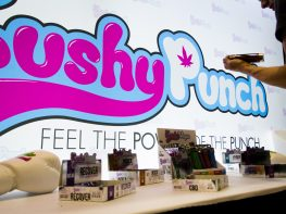 Kushy Punch and Kushy Vape Product Line up