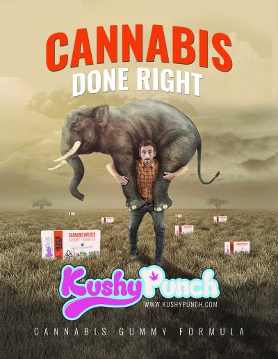 elephant cannabis