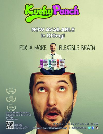 flexible brain