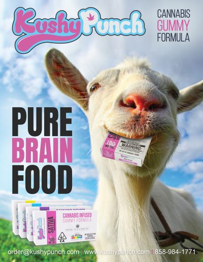 goat brain food